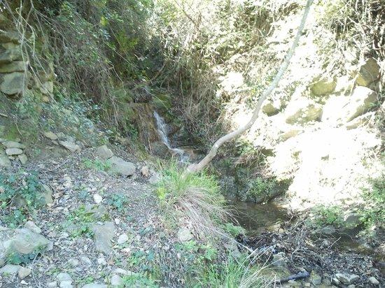 Via Julia Augusta: ruscello naturale