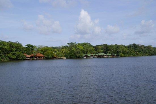 Hotel Manatus: View