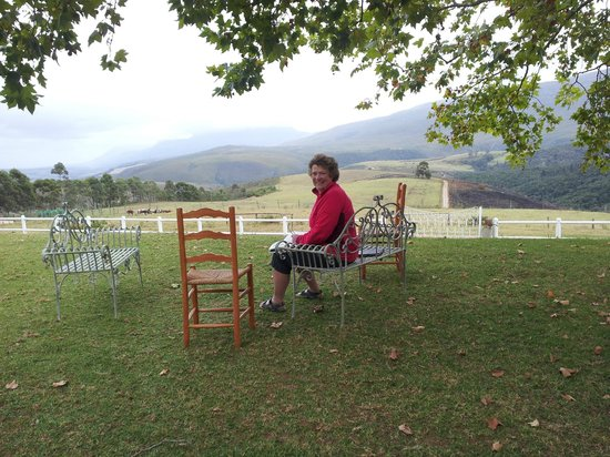 Honeywood Farm: Honeywood view of the Langeberg