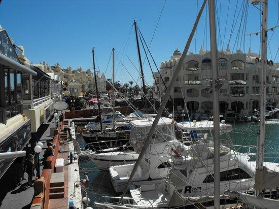 Pizzeria La Parolaccia : vue sur le port depuis le restaurant