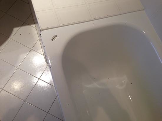 Mercure Rennes Place de Bretagne : baignoire en salle état