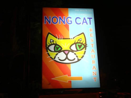 Nong Cat: Outside