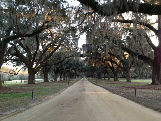 Several movies have been filmed at Boone Hall, including ...