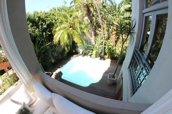 Cape Standard: Pool