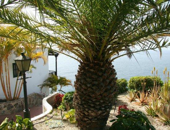 Tecina foto di hotel jardin tecina playa de santiago for Jardin tecina