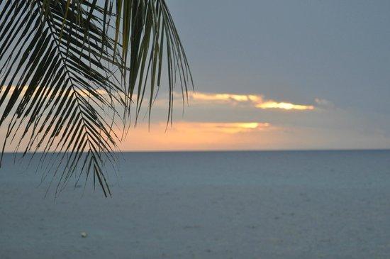 เกาะเต่า รีกัล รีสอร์ท: View from room