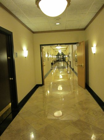 Best Western Plus Milwaukee Airport Hotel & Conference Center: Hallway to bar/lounge and conference rooms