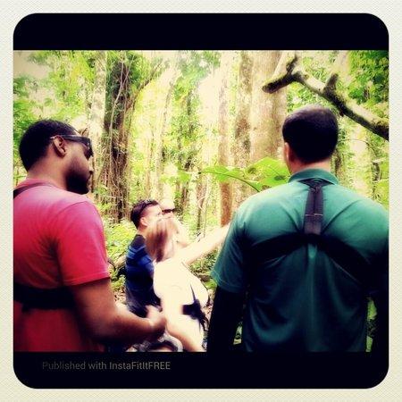 JungleQui Rainforest EcoAdventure Park: The group with ms Ramirez!!!