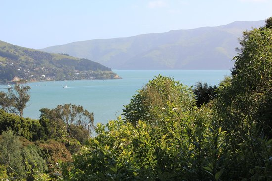 Akaroa Cottages - Heritage Collection: This can't be beat