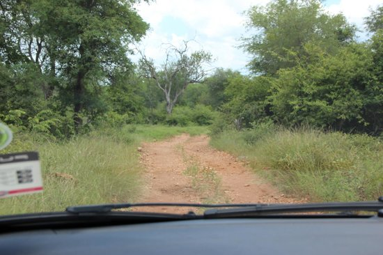 Garonga Safari Camp: Anfahrt