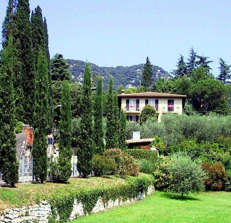 Hotel Degli Olivi: Hotel set in an olive grove