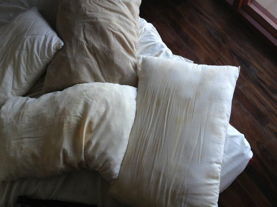 Tropic of Capricorn: pillows with mold !!!