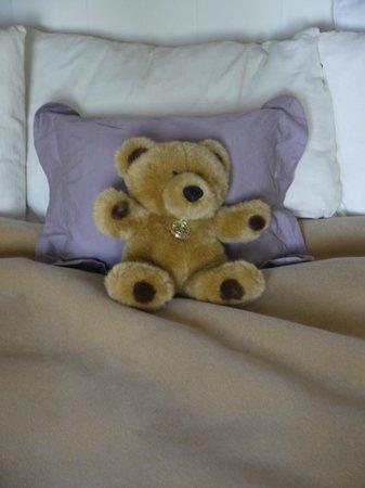 Paradice Motel: Ted