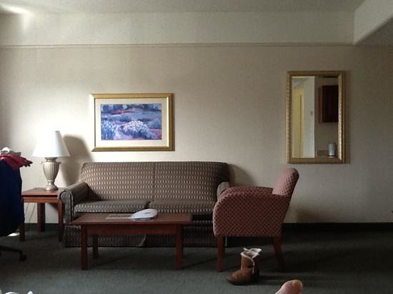 Holiday Inn Hotel & Suites Overland Park West: couch area