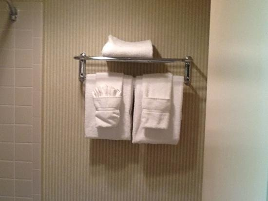 Holiday Inn Hotel & Suites Overland Park West: nice towel selection