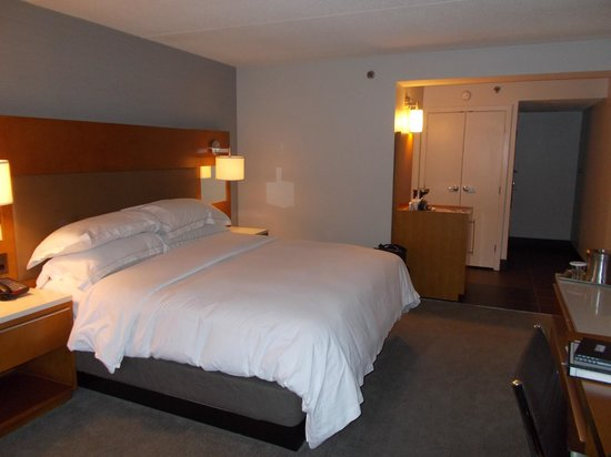 Hilton Albany: King Room