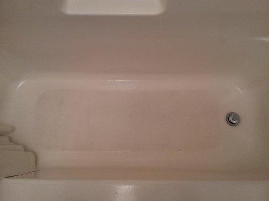 Gulf Breeze Motel: bathtub scub