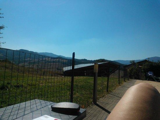 Hotel Gli Orzali: panorama dalla piscina