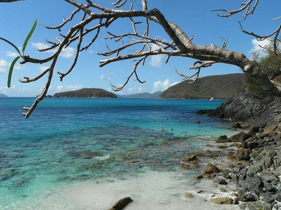 Cinnamon Bay Campground: Great Snorkeling on the east end