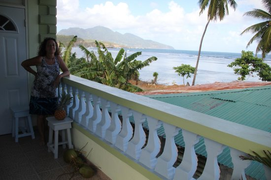 The Nixons Bay Side Mangrove Inn: The view from the balcony