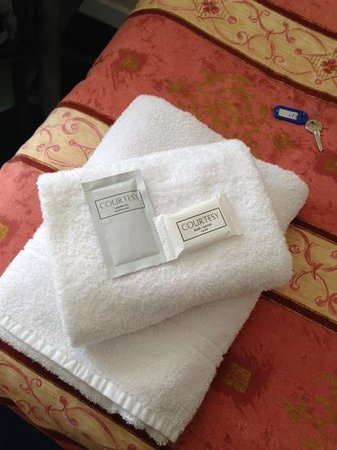 Hampton Court Guesthouse: linen clean and tidy. free shampoo and soap.