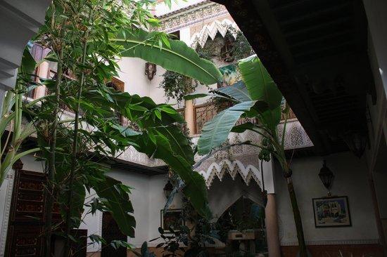 Riad Chraibi : la cour intérieur, très arborée