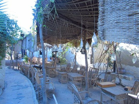 Zad El Mosafer Ecolodge: a nice cafe to have a nice cup of oriental tea