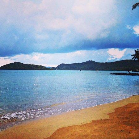 Monkey Island Resort: Stranabschnitt