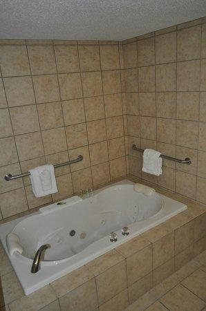 Holiday Inn Express White House: Bathroom