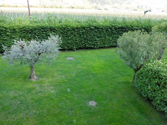 Verdeblu Residence : Giardino