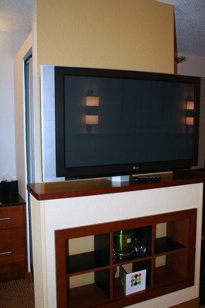 Hyatt Place San Antonio/Riverwalk: TV