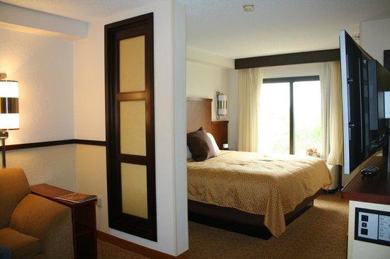 Hyatt Place San Antonio/Riverwalk: Room