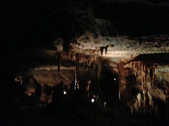 Grotte du Pech Merle : grotte