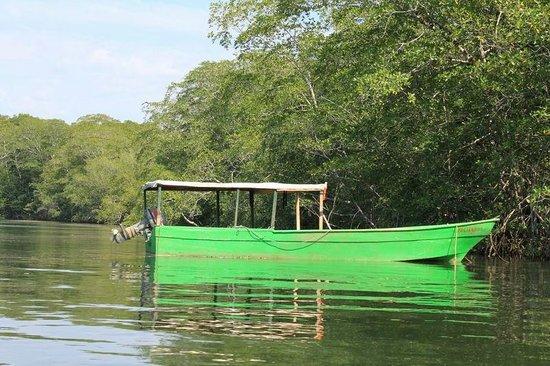 Finca Buena Vista: Ein Fischerboot