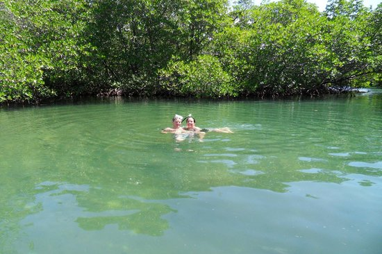 Aleli Tours - Day Tours: First snorkeling spot