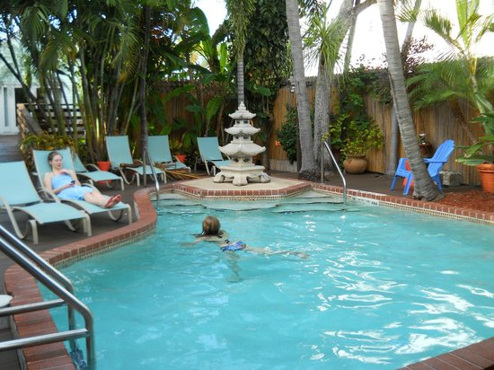 Douglas House: Pool Ares
