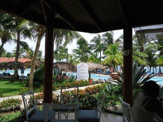 Viva Wyndham Tangerine: pool