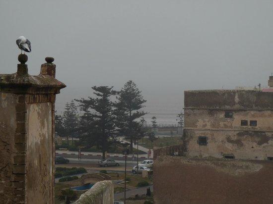 Riad l'Ayel d'Essaouira: Vista dal terrazzo