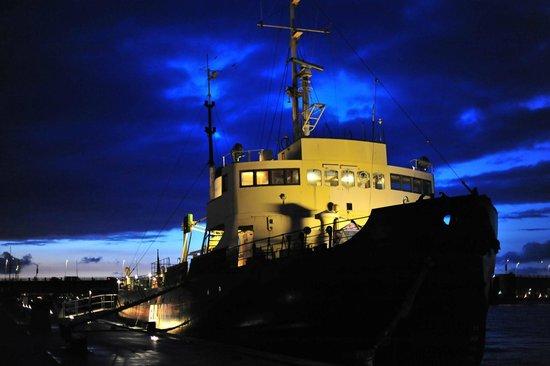 Isbryderen Elbjorn: The restaurant Elbjorn in nightfall