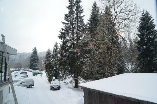 Hotel Winterberg: Uitzicht bij het ontbijt
