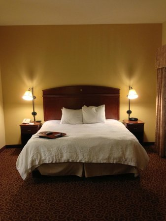 Hampton Inn & Suites Rochester - North : tall ceilings in room