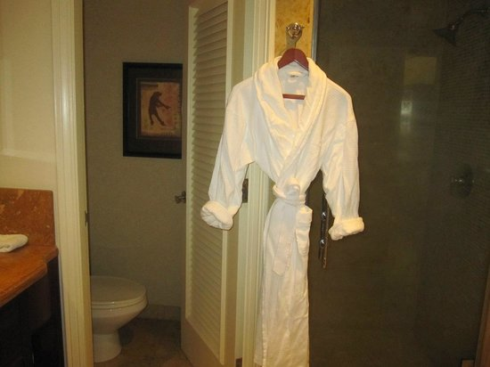 The Ritz-Carlton, Kapalua: Shower