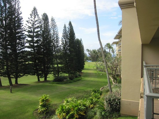 The Ritz-Carlton, Kapalua: Golf course view from room