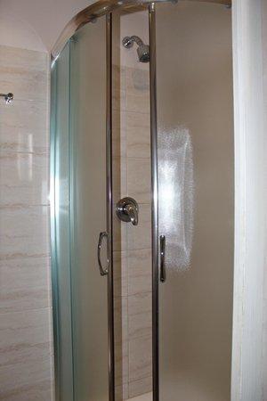 Hotel le Petit Trianon: Excellent shower!