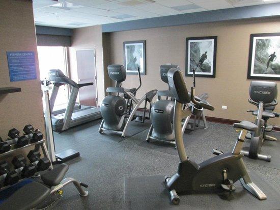 Wyndham Garden Elk Grove Village/O'Hare : big fitness room
