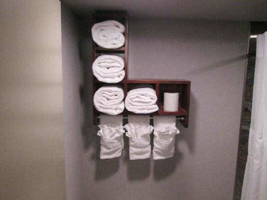 Wyndham Garden Elk Grove Village/O'Hare : cool towel rack