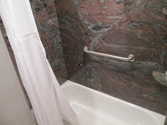 Wyndham Garden Elk Grove Village/O'Hare : new shower