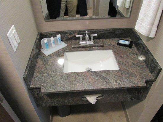 Wyndham Garden Elk Grove Village/O'Hare : my sink