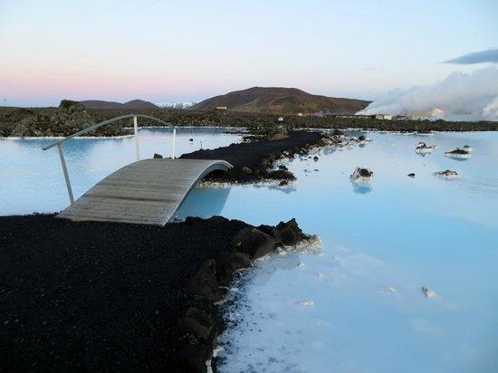 Pool Picture Of Blue Lagoon Iceland Grindavik Tripadvisor