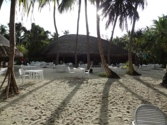 Kuramathi Island Resort: Le Palm